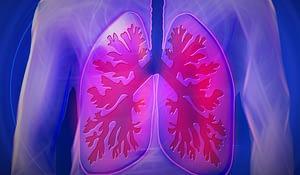 lungs COPD CBD
